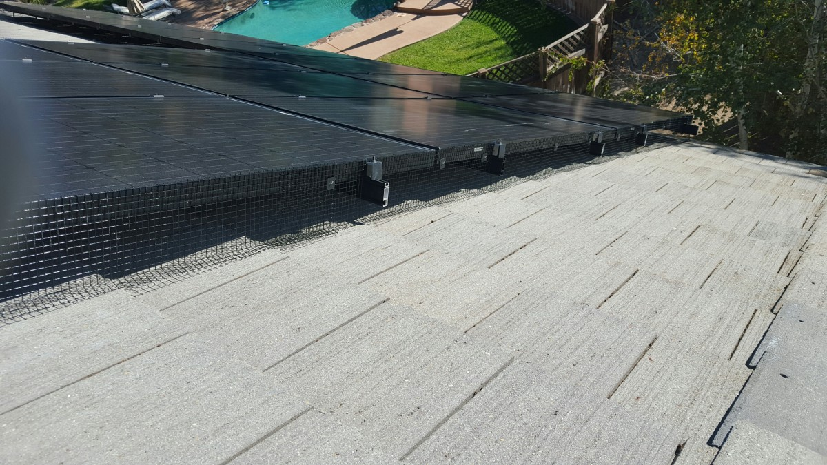 Solar Panel Bird Proofing & Deterrents in San Francisco | Birds Away